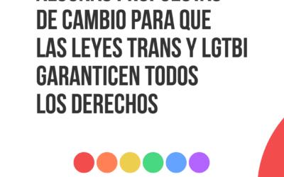 FELGTB, Triángulo y Chysallis presentan propuestas para que las leyes trans y LGTBI garanticen todos los derechos